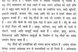009 Essay Example Importance Of Family Nothing Found For On Plants And Tree L Dreaded Class 1 In Hindi Outline