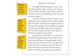 009 Essay Example Narrative Descriptive Samples Examples Sample Good Topics Maxresde Impressive Pdf About Earthquake Outline