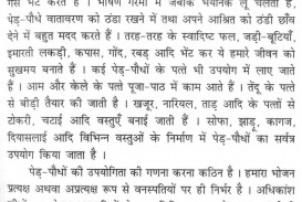 009 Essay Example Why Is It Important To Vote Voting Thumb On Role Of Voters In Election Democracy Importance Hindi India Pakistan Day Fearsome Right Contest
