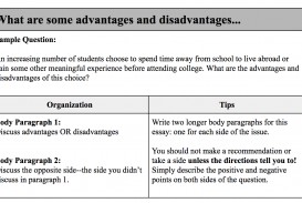 009 Essay Organization Example Impressive Techniques Activity Definition