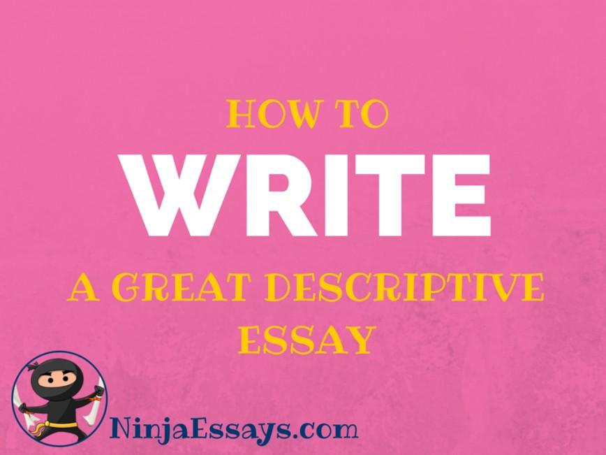 009 Ninja Essays Essay Example Fascinating Ninjaessays Writing Contest Review Screwball