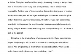 009 P1 Essay Example Success Stirring Definition Academic Conclusion