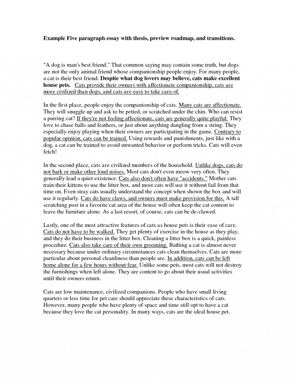 009 Sample Paragraph Essay Five 259424 Stupendous 5 Camping Pdf For 4th Grade Large