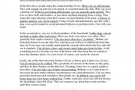 009 Sample Paragraph Essay Five 259424 Stupendous 5 Camping Pdf For 4th Grade