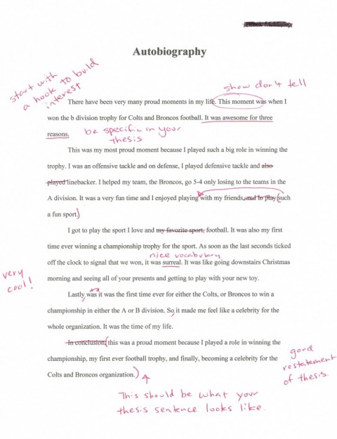 009 Tutoring Essay Writing Example Autobiography Archives The Solution Private Tutor Brockassignment1b Awesome Austin Tx 480