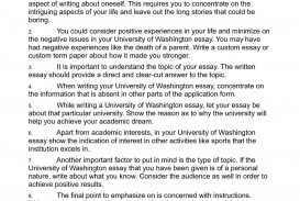009 University Of Washington Essay Example Unique Application Examples Prompts Bothell Prompt