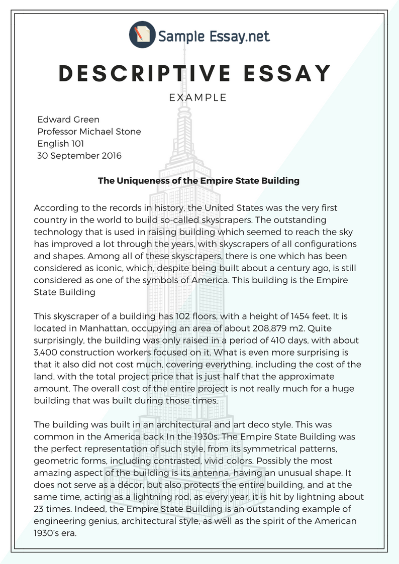 010 Essay Example Appic