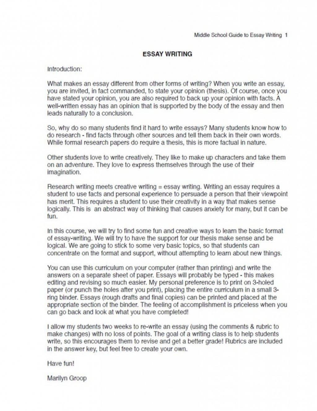 010 Essay Example Argumentative Middle School Ms Excerpt Unbelievable Topics Pdf For Large