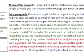 010 Essay Example Body Paragraph Sample Impressive Argumentative Sentence Starters Format First Transitions