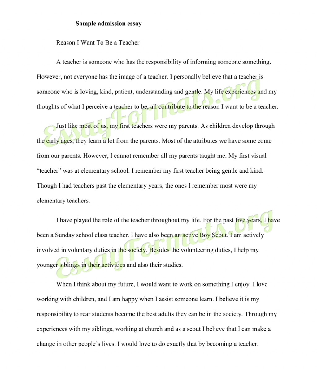 010 Essay Example College Application Outline Singular Pdf Layout Large