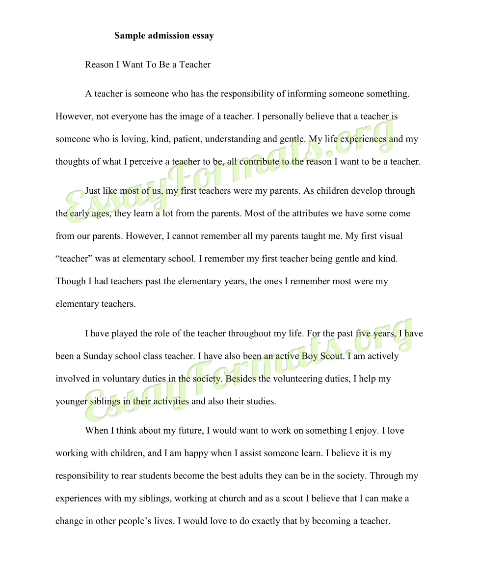 010 Essay Example College Application Outline Singular Pdf Layout Full