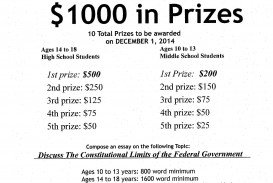 010 Essay Example Contest Flyer Jpeg Buy Outstanding Uk Law Cheap