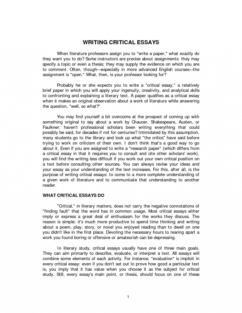 010 Essay Example How To Write Descriptive Magnificent O Level A About Person Large