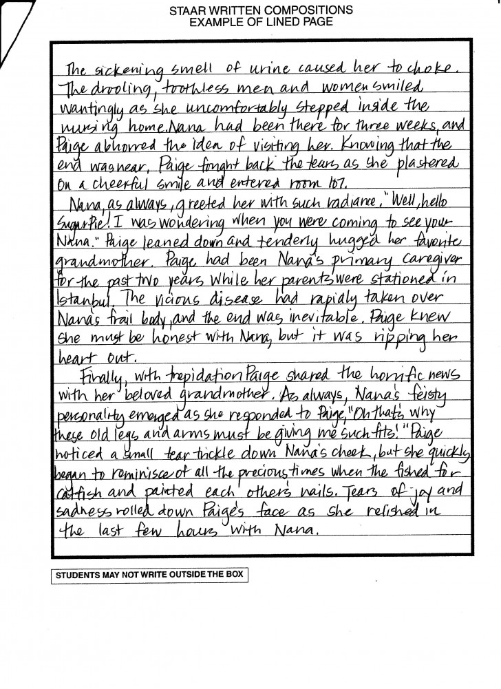 010 Essay Example How To Write Literary Writing 001 Formidable A Anchor Chart Introduction Good 728