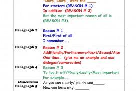 010 Essay Example Informative Graphic Fascinating Organizer Free Informational Pdf 6th Grade