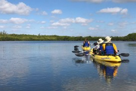 010 Essay Example Kayaks 1440x900ext Biscayne National Wonderful Park 320