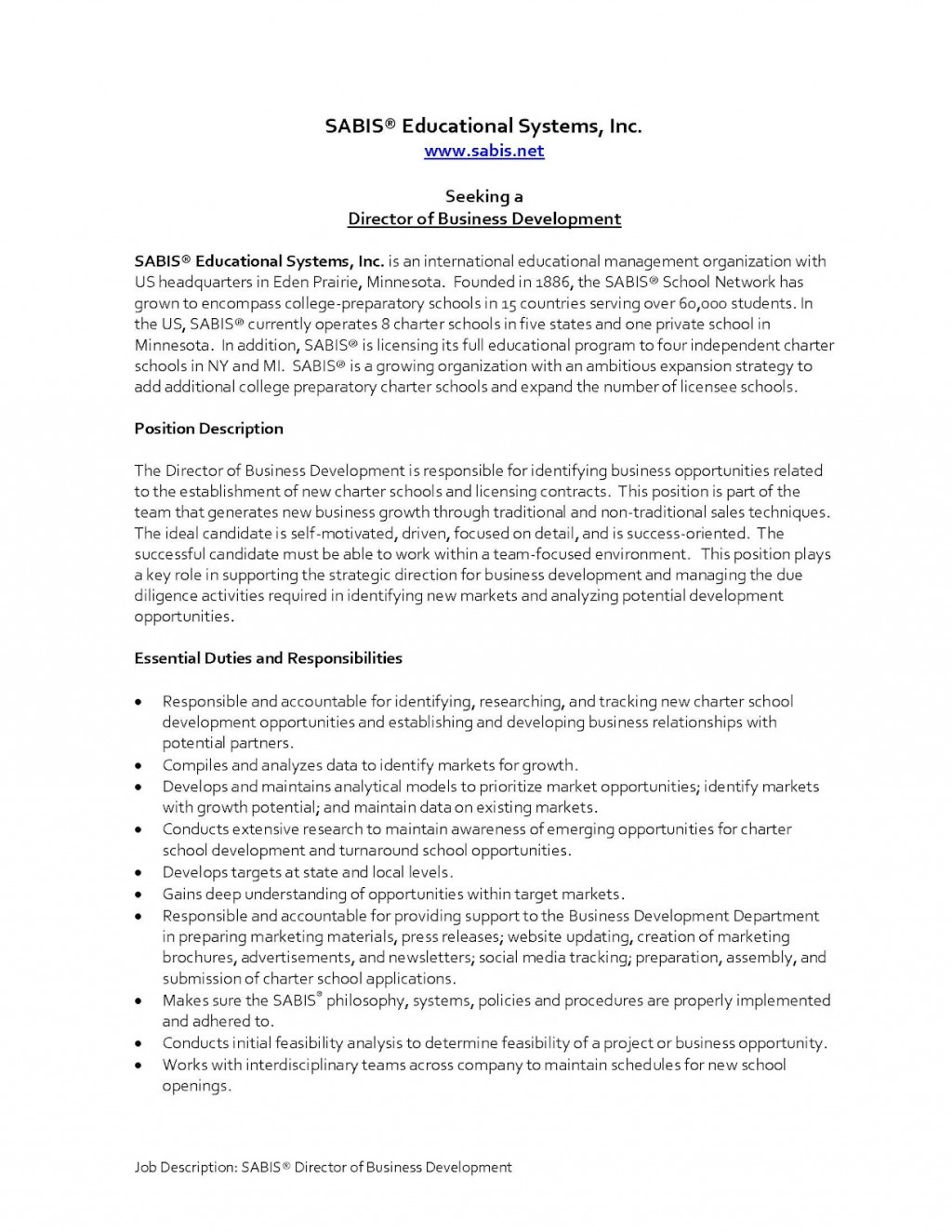 010 Essay Example Literary Criticism Director20business20development20job20description Page 1 Excellent On The Great Gatsby Ideas Conclusion Sample Large