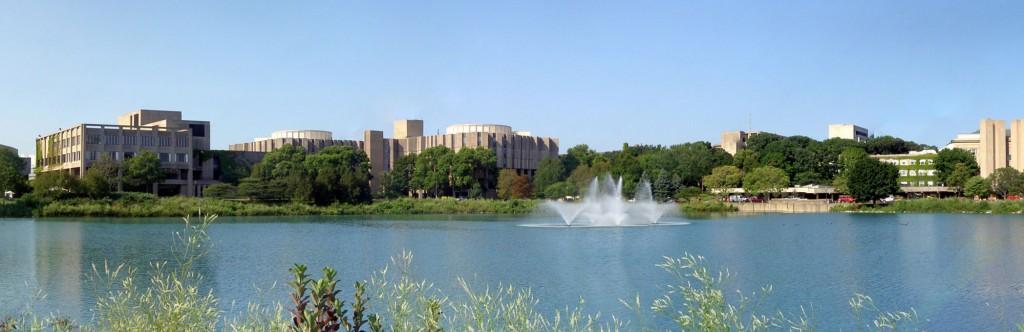 010 Essay Example Northwestern Unique Supplement University 2017 Large