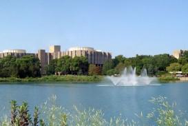 010 Essay Example Northwestern Unique Supplement University 2017