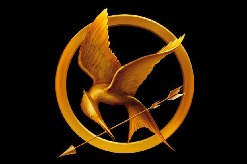 010 Essay Example The Hunger Games Mockingjay Pin 1920x1200 Symbol11 Book Imposing Review 868
