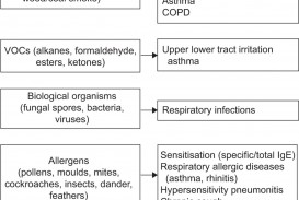 010 Essay On Respiratory Diseases Example Fascinating