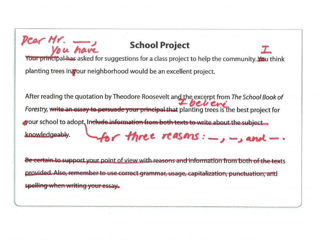 010 Faq  School Project Jpeg Prompt Definition Essay FascinatingLarge