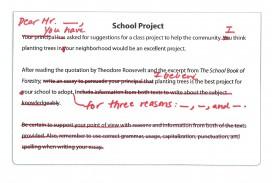 010 Faq  School Project Jpeg Prompt Definition Essay Fascinating