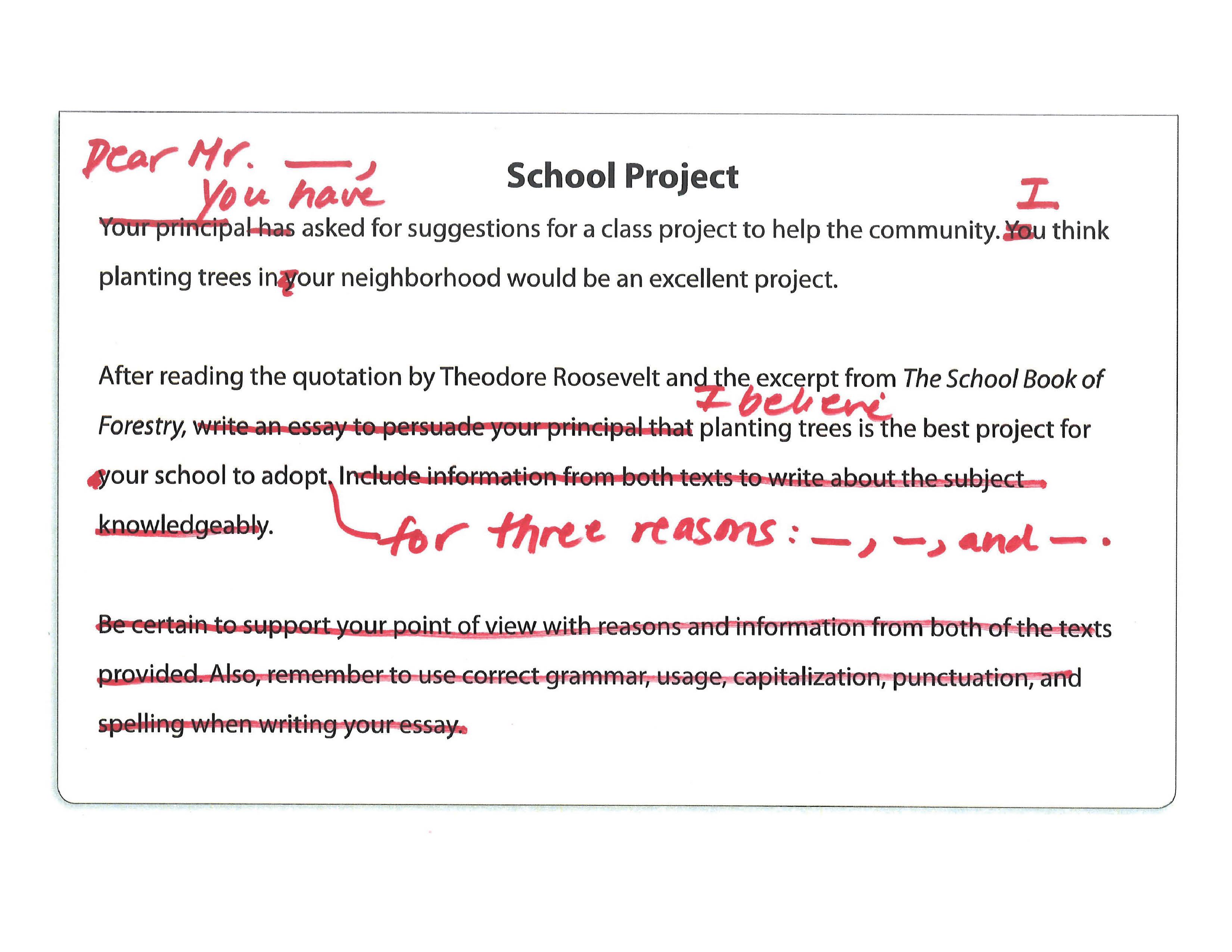 010 Faq  School Project Jpeg Prompt Definition Essay FascinatingFull