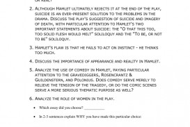 010 Hamlet Madness Essay Example 008023648 1 Stupendous Outline Theme