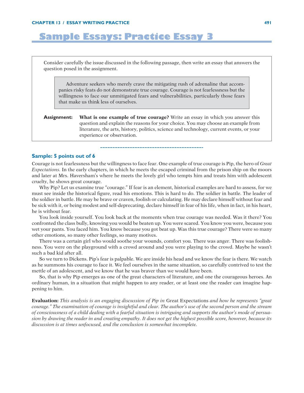010 New Sat Essays Striking Essay Examples Perfect Score Good Prompts Full