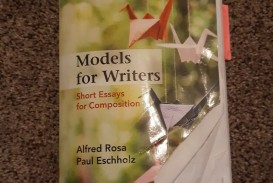 010 S L1600 Essay Example Models For Writers Short Essays Singular Composition 12th Edition Pdf 13th