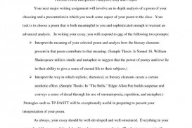 010 Sample Interpretive Essay Example Definition Resume Impressive 5th Grade