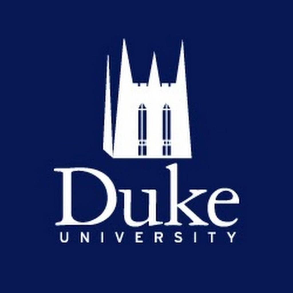 010 Unnamed Essay Example Duke Fearsome Supplement Collegevine Supplemental Reddit Large
