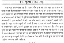 011 Aa110 Thumb Essay On Love For Animals In Hindi Fascinating Towards And Birds 320