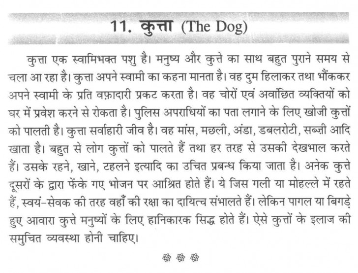 011 Aa110 Thumb Essay On Love For Animals In Hindi Fascinating Towards And Birds 728