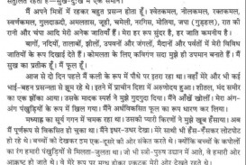 011 About Rose Flower Essay Example 100063 Thumbresize10602c2146 Unbelievable In Marathi Kannada Language