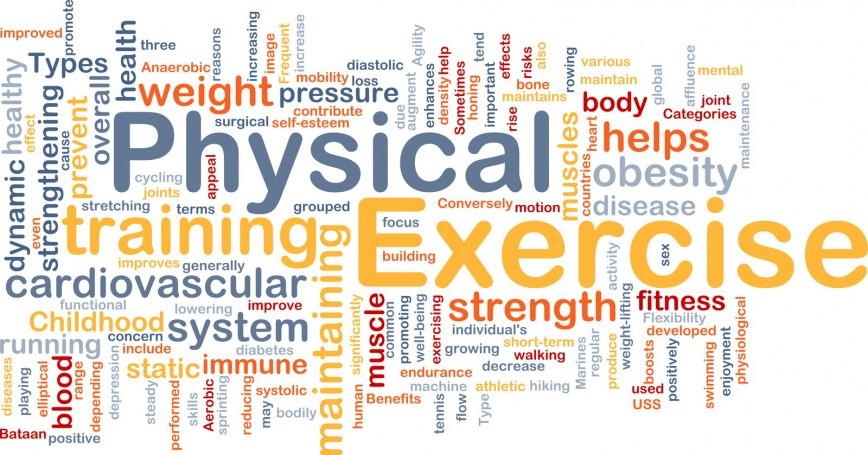 Essays on exercise