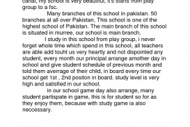 011 Essay Example My Life Ideas Collection Writing School Easy About Our Sensational In Urdu Aim Language Ambition 320