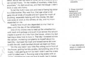 011 Essay Example Mysummer Rare 200 Word About Myself Sample