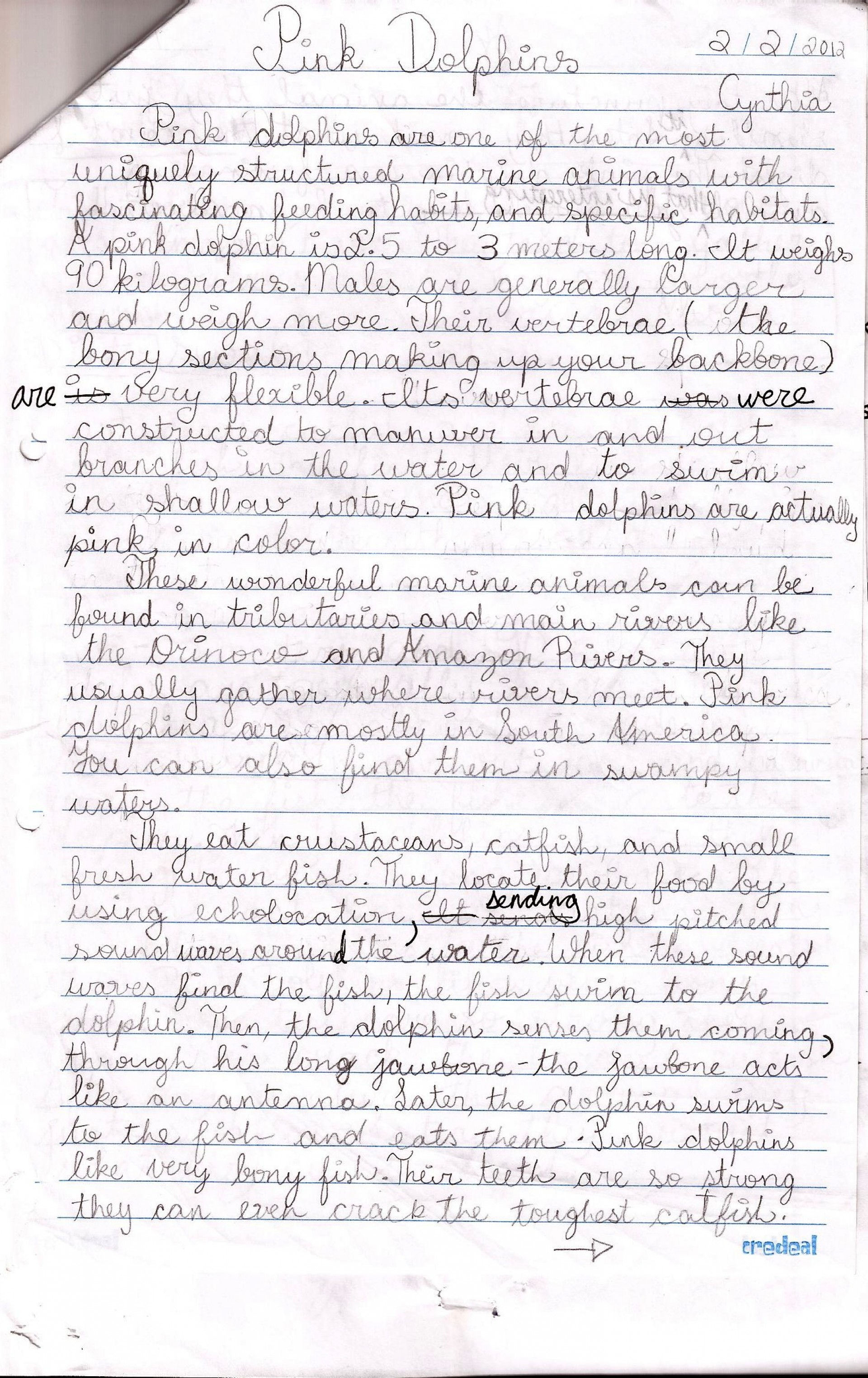 011 Essay Example Pink Dolphins Handwritten Draft Topics For Grade Marvelous 5 Writing Students Persuasive 5th English Question Paper Cbse 1920
