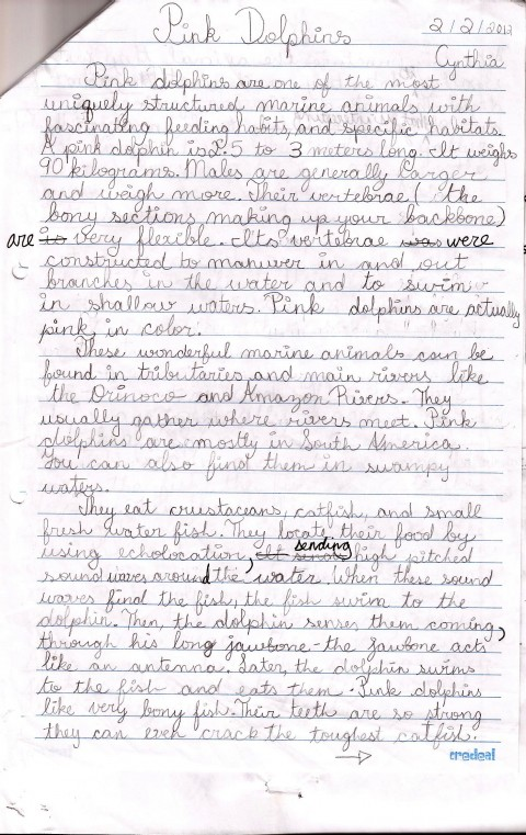 011 Essay Example Pink Dolphins Handwritten Draft Topics For Grade Marvelous 5 Writing Students Persuasive 5th English Question Paper Cbse 480