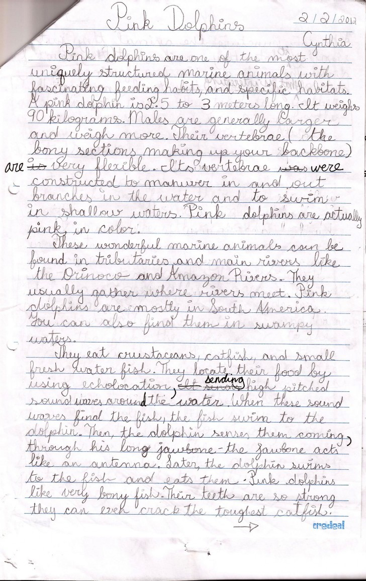 011 Essay Example Pink Dolphins Handwritten Draft Topics For Grade Marvelous 5 Writing Students Persuasive 5th English Question Paper Cbse 728