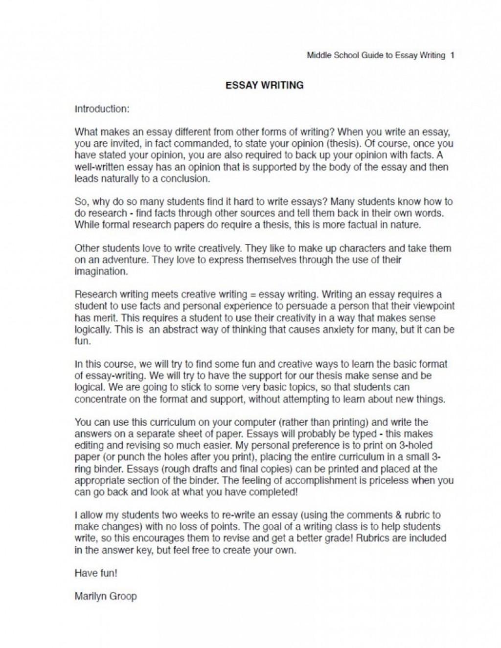 011 Essay Example School Uniform Ms Excerpt Sensational Is Compulsory In Hindi Conclusion Large
