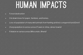 011 Human Impact On The Environment Essay Topics Example About Nature And Impressive