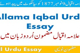 011 Maxresdefault Essay Example Urdu Allama Dreaded Iqbal On In For Class 10 With Poetry Ka Shaheen Headings And 320