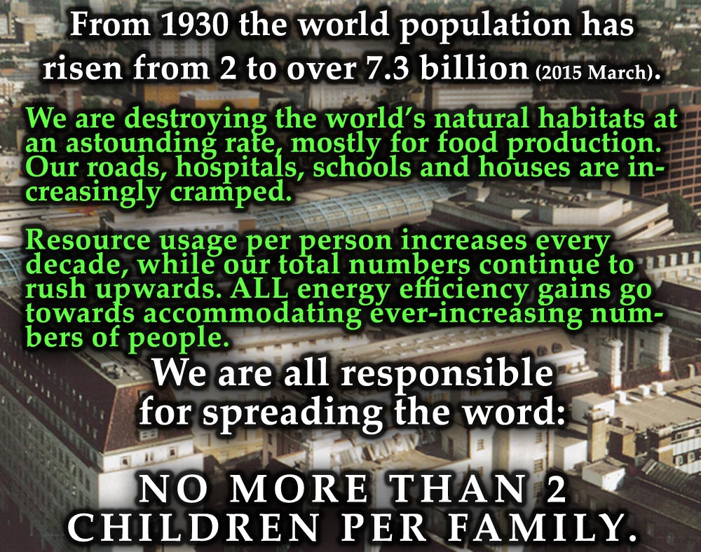 011 No More Than 2 Children Per Family Cause And Effect Of Overpopulation Essay Remarkable Full