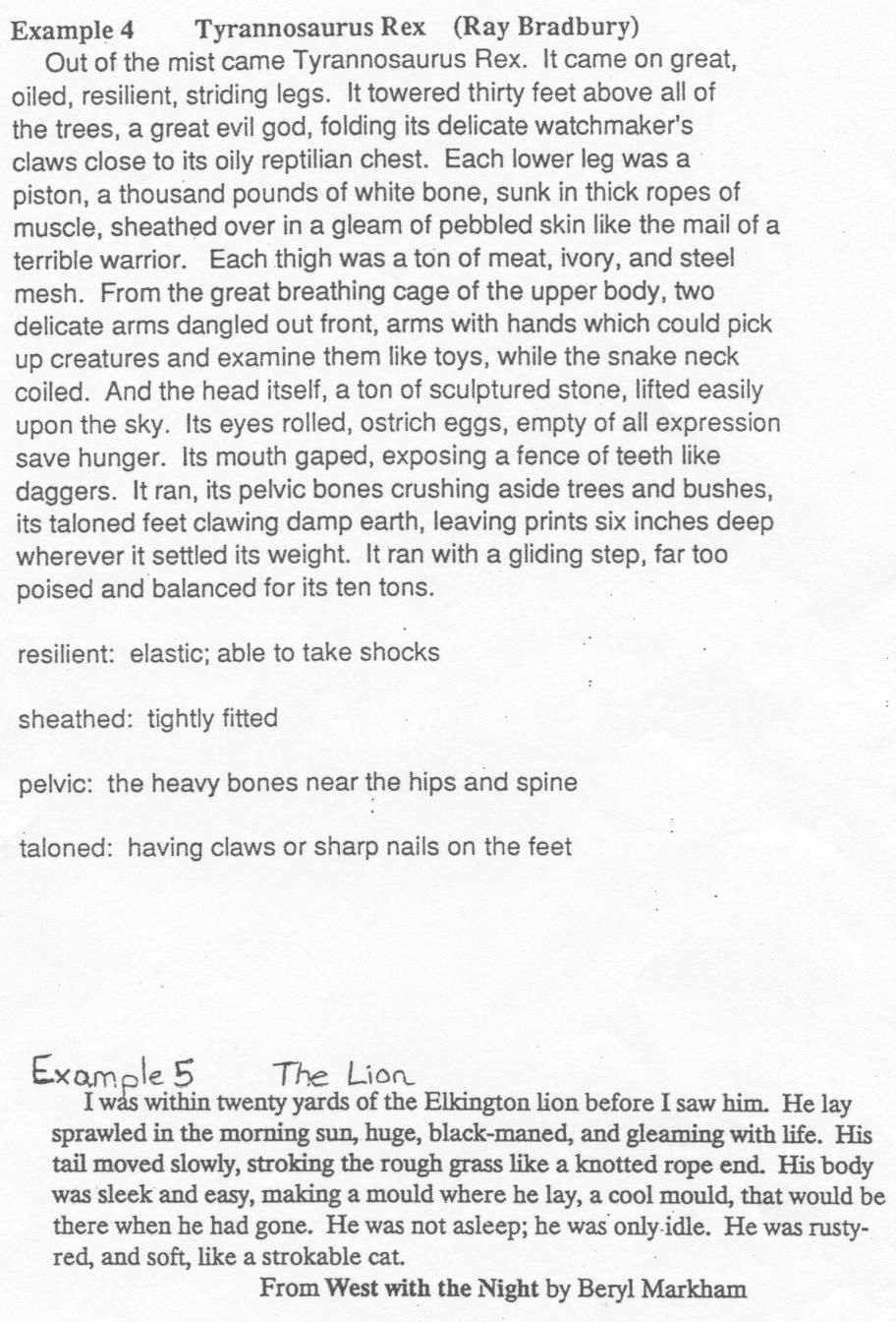 Good Descriptive Essay Examples for All Students