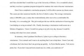 001 Essay Example Uiuc 4456844117 University Of Illinois