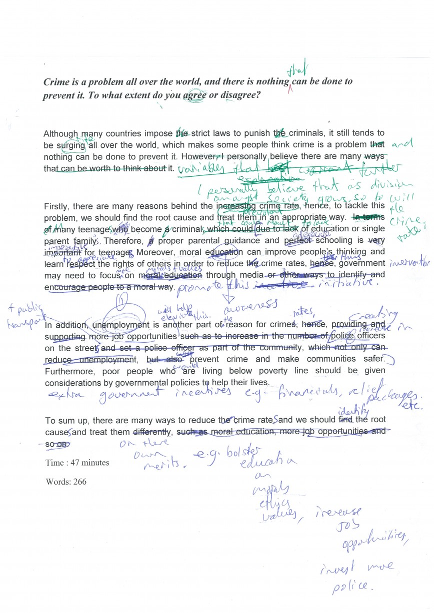 012 Essay Example Crime And Punishment Wondrous Outline Topics Questions