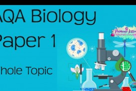 012 Essay Example Maxresdefault Biology Stunning Topics Prompts Extended Questions Question And Answer